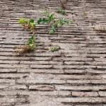 Römische Mauer