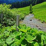 In den Bergen rund um Bad Tölz