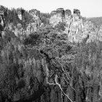 Einzigartige Felsformationen in der Sächsischen Schweiz