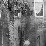 Alte Hausfassade in Amelia Island (Florida)