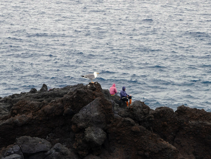 Angler am Meer auf Lanzarote