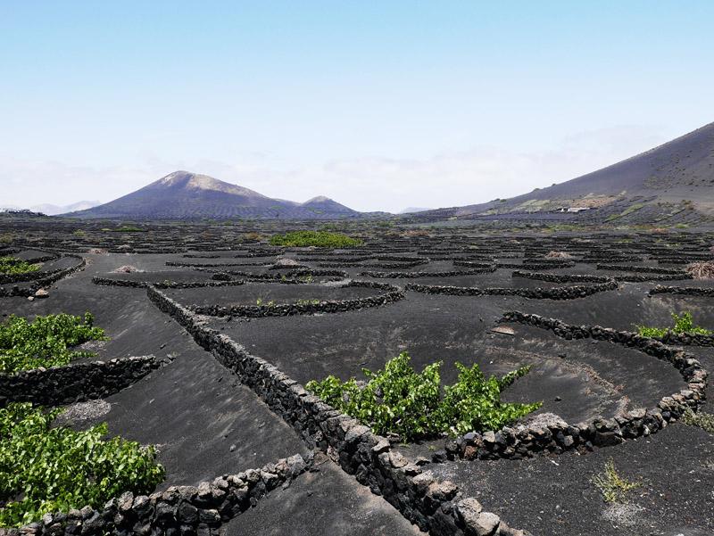 Weinanbaugebiet La Geria (Lanzarote)