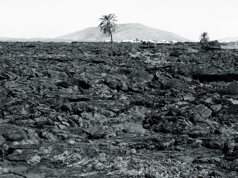 Vulkanlandschaft bei der Fundación César Manrique (Lanzarote)