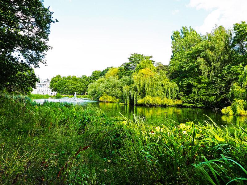 St. James´s Park in London