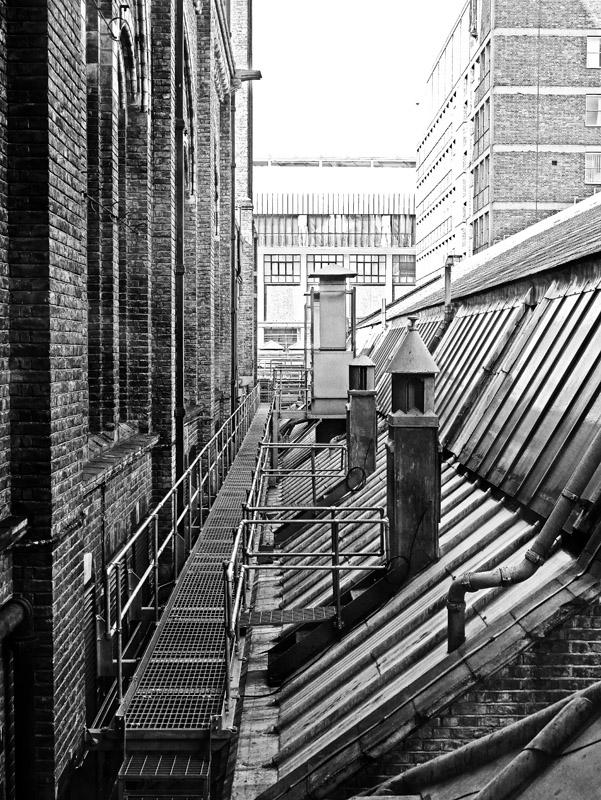 Dach des Natural History Museum London